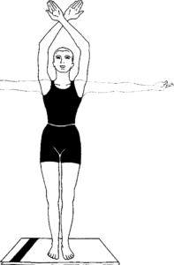 Hasta Utthanasana Raised arm Pose